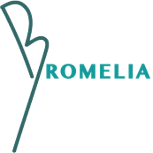 Bromelia Rio Swimwear