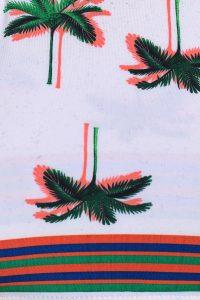 Sandy Palm Tree
